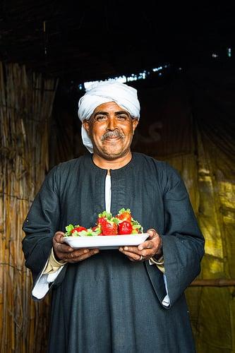 Eksport av matpoteter, urter, frukt og grønnsaker fra Egypt
